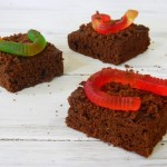 Wormy Dark Chocolate Brownies