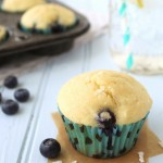 Coconut Oil Blueberry Muffins